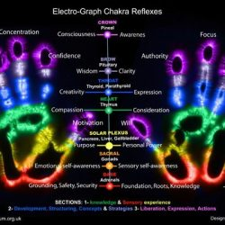 eletrograph Hands Chakra Reflexes